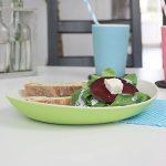 assiette picnic TOP 8 image 4 produit
