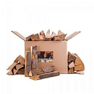 Axtschlag Bois de fumage en caryer 10kg, multicolore bois pour fumoir 10 kg Beech - Buche de la marque Axtschlag image 0 produit
