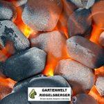 briquettes de charbon de bois weber TOP 3 image 3 produit