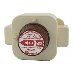 Gurtner - Détenteur Propane - Détendeur Gaz Propane 5kg/h Sécurité Basse Pression M20x150 de la marque Gurtner image 0 produit