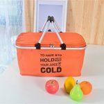 IHOMAGIC Sac isotherme pique-nique familial Cooler Sac de voyage isotherme Lunch Sac isotherme pour homme et femme. Orange de la marque IHOMAGIC image 1 produit