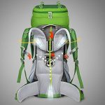 MOUNTAINTOP 70L + 10L Sac à dos de randonnée/sac au dos Trekking Sac avec housse de pluie pour l'escalade,le camping,la randonnée pédestre, Voyage et Alpinisme,33,5 x 18,3 x 11,8 pouces de la marque MOUNTAINTOP image 1 produit