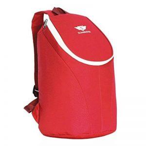 Slimbridge Seatown sac à dos pour pique-nique isolé de la marque Slimbridge image 0 produit