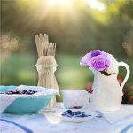 vaisselle plastique picnic TOP 3 image 3 produit