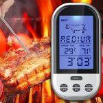 veau barbecue TOP 11 image 1 produit